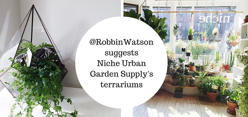Niche Urban Garden Supply