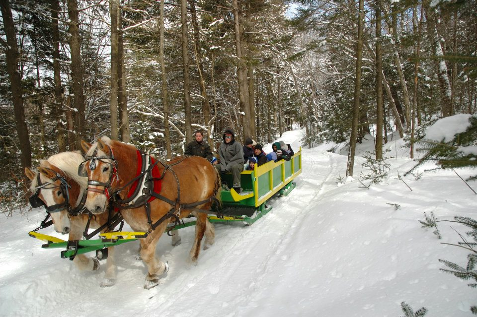 adams farm sleigh ride wilmington vermont