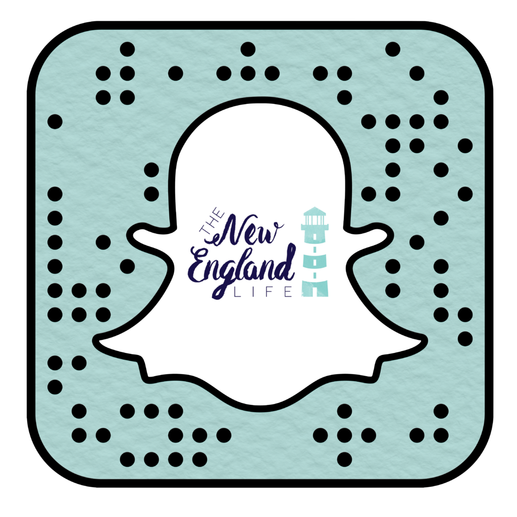 Snapcode_Logo The New England Life